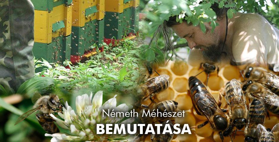 Németh Méhészet Alsónemesapáti